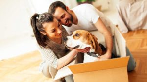 Having a successful Move with the Pets! Secure Moving Ltd.