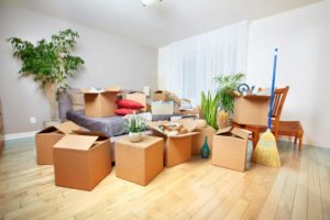 The most important Moving Safety Tips by Secure Moving LTD
